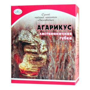 Купить Лиственничную губку (агарикус) гриб