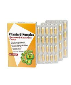 Купить ВИТАМИН-В-КОМПЛЕКС / VITAMIN-B-KOMPLEX SALUS-HAUS GMBH